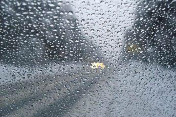 ურეკში ძლიერი წვიმის გამო სახლები დაიტბორა
