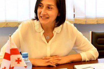 ნინო გოგუაძე ევროპის საბჭოს საპარლამენტო ასამბლეის მონიტორინგის კომიტეტის წევრებს შეხვდა