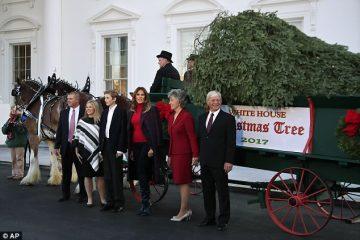 მელანია ტრამპმა თეთრ სახლში ნაძვის ხე ტრადიციულად მიიღო