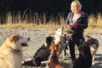 დაკარგული ქალი საკუთარმა ძაღლებმა გადაარჩინეს