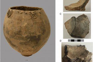 """BBC: """"მსოფლიოს უძველესი ღვინო"""" საქართველოში, 8000 წლის წინანდელ ჭურჭელში აღმოაჩინეს"""