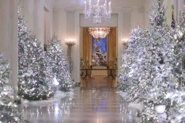 აშშ-ის პირველმა ლედიმ თეთრი სახლი საახალწლოდ მორთო (ვიდეო)