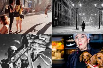 ქუჩის ფოტოგრაფების საუკეთესო სურათები
