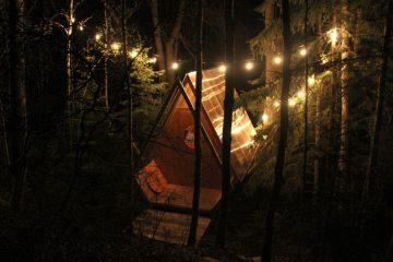 საოცნებო შტაბი ტყეში