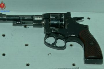 შსს-მ ცეცხლსასროლი იარაღი და საბრძოლო მასალა ამოიღო