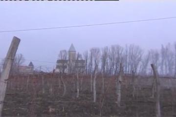 ბადაგონის ღვინის ქარხანა ვლადიმერ ჯანჯღავას მამის სახელობისაა (ვიდეო)