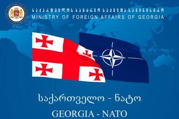 თბილისში დღეს ნატო-ს სამხედრო კომიტეტი ჩამოდის