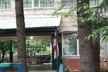 ქუთაისის მე-17 ბაგა-ბაღში, ქვეწარმავლების გამო, სასწავლო პროცესი გაურკვეველი ვადით გადაიდო