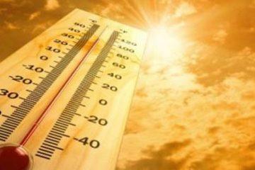 """""""ჰაერის მაქსიმალურმა ტემპერატურამ, შესაძლოა,  +41 გრადუსს მიაღწიოს""""- გარემოს ეროვნული სააგენტოს პროგნოზი"""