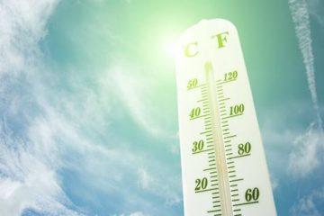 ჰაერის ტემპერატურამ, შესაძლოა, +43 გრადუსს მიაღწიოს – გარემოს ეროვნული სააგენტო