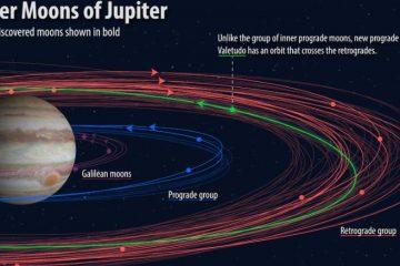 იუპიტერის ირგვლივ მეცნიერებმა 12 ახალი ბუნებრივი თანამგზავრი აღმოაჩინეს