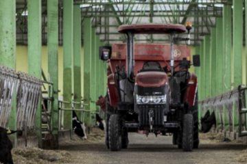 ქართველ ფერმერებს მერძეულ მესაქონლეობაში ტრენინგს საერთაშორისო სპეციალისტები უტარებენ