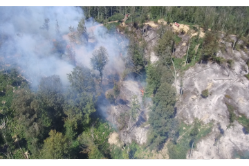 საგანგებო სიტუაციების სამსახური ხაშურში ტყის ხანძრის დრონით გადაღებულ კადრებს ავრცელებს