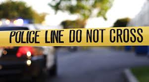 პოლიციამ წალენჯიხის საკრებულოს თანამშრომელი და მასთან ერთად 2 პირი განსაკუთრებით მძიმე დანაშაულის დაფარვის, 1 პირი კი დანაშაულის შეუტყობინებლობის ბრალდებით დააკავა