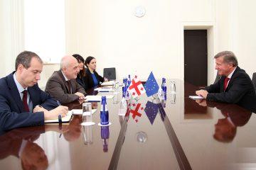 საგარეო საქმეთა მინისტრმა იანოშ  ჰერმანთან გამოსამშვიდობებელი შეხვედრა გამართა