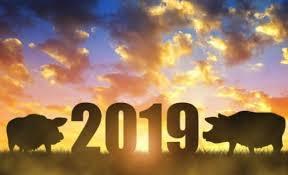 2019 წლის ფინანსური ჰოროსკოპი