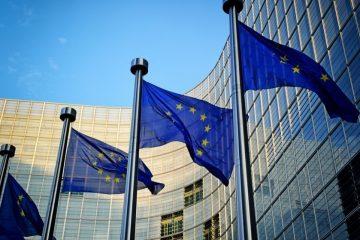 საპრეზიდენტო არჩევნები და ია კერზაიას საქმე – ევროპარლამენტარები საქართველოში შექმნილ საგანგაშო ვითარებაზე საუბრობენ
