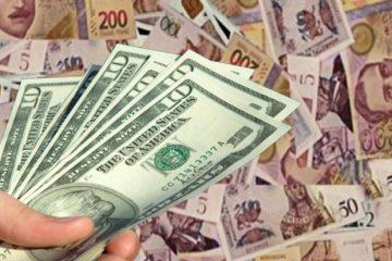 1 აშშ დოლარის ოფიციალური ღირებულება 3.1349 ლარი გახდა