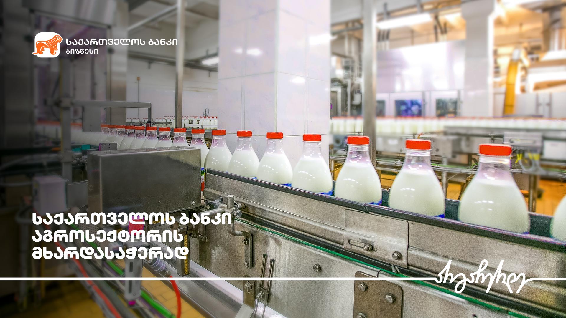 საქართველოს ბანკის მხარდაჭერით ჩოხატაურში რძის გადამამუშავებელი საამქრო  შენდება
