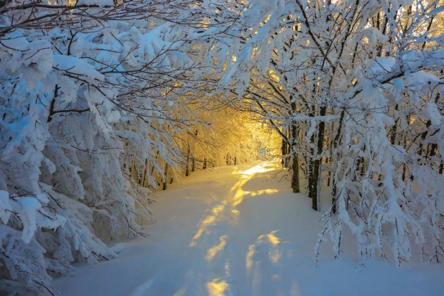 24-25 დეკემბერს დასავლეთ, ხოლო 24-26 დეკემბერს აღმოსავლეთ საქართველოში ღამის საათებში მოსალოდნელია ჰაერისტემპერატურის მნიშვნელოვანი დაკლება