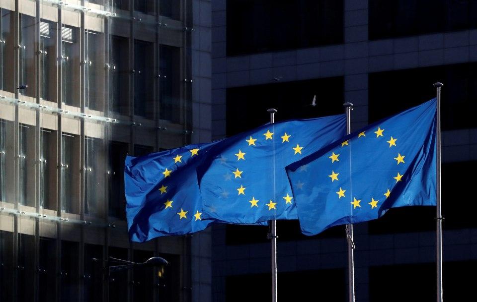 """ევროკავშირის წარმომადგენლობა – ნიკა მელიას გირაოს თანხა """"ევროპულმა ფონდმა დემოკრატიისთვის"""" გამოყო და ხელისუფლებას საია-მ გადასცა"""