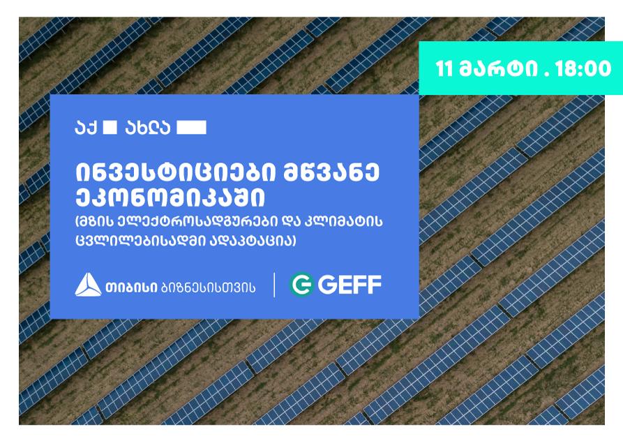 """თბილისში ონლაინ ფორუმი """"ინვესტიციები მწვანე ეკონომიკაში"""" ჩატარდება"""