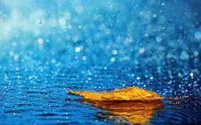 17 მაისს დღის მეორე ნახევრიდან 19 მაისის დღის ბოლომდე საქართველოში მოსალოდნელია დროგამოშვებით წვიმაელჭექით